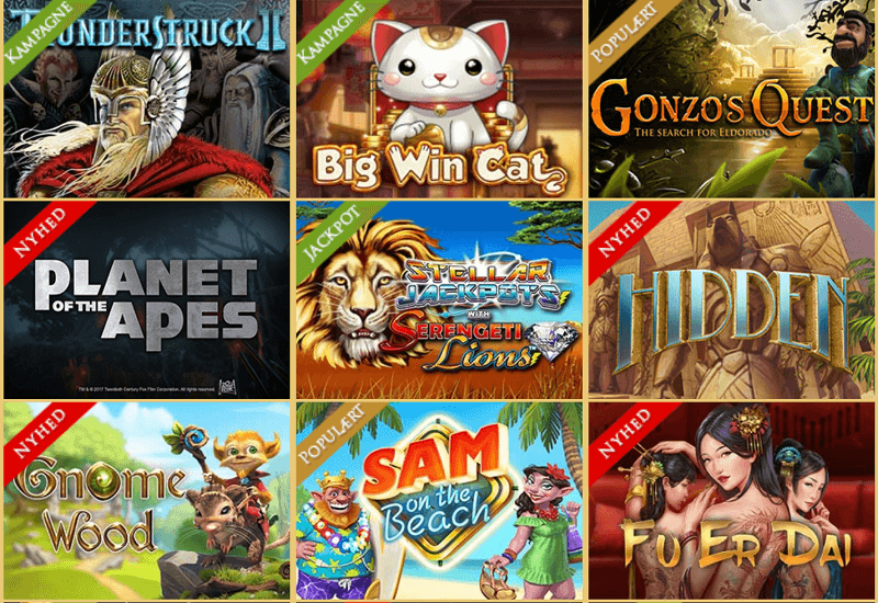 Royal Casino DK Video Slots