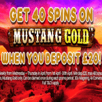 40 Spins on Mustang Gold from Handy Vegas