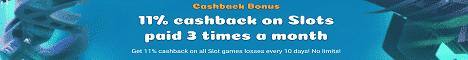 Samosa Casino Review Bonus