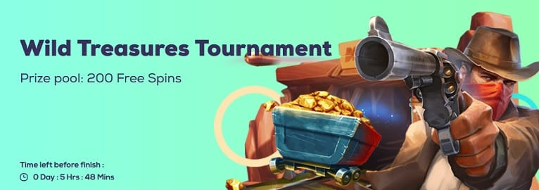 Wild Fortune Casino Promotion
