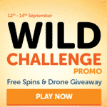 A New Wild Challenge Promo from WildSlots
