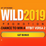Wild 2019: a holiday promotion by WildSlots