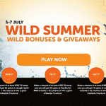 Wild Summer promo by WildSlots casino